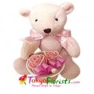 send teddy bear to tokyo in japan