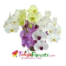 send flowers to tokyo