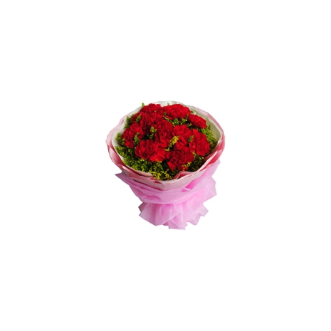 send 11 red carnations to tokyo japan