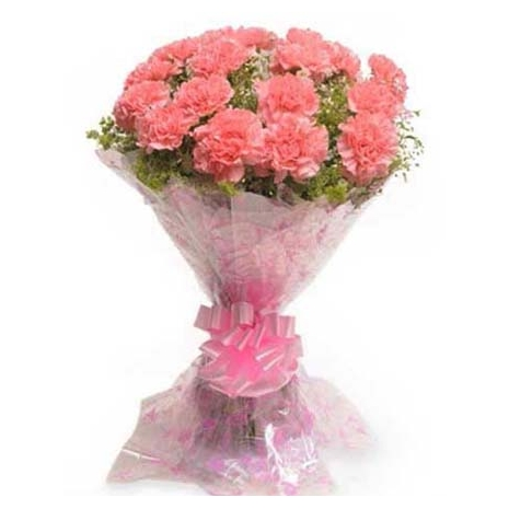 send 12 pink carnation bouquet to tokyo