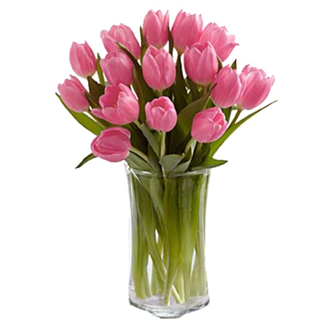 send 12 pink prelude tulip bouquet to japan